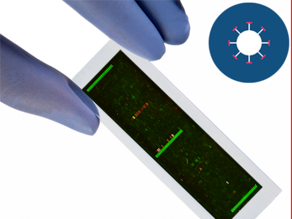 PEPperCHIP® Chikungunya Virus Microarray